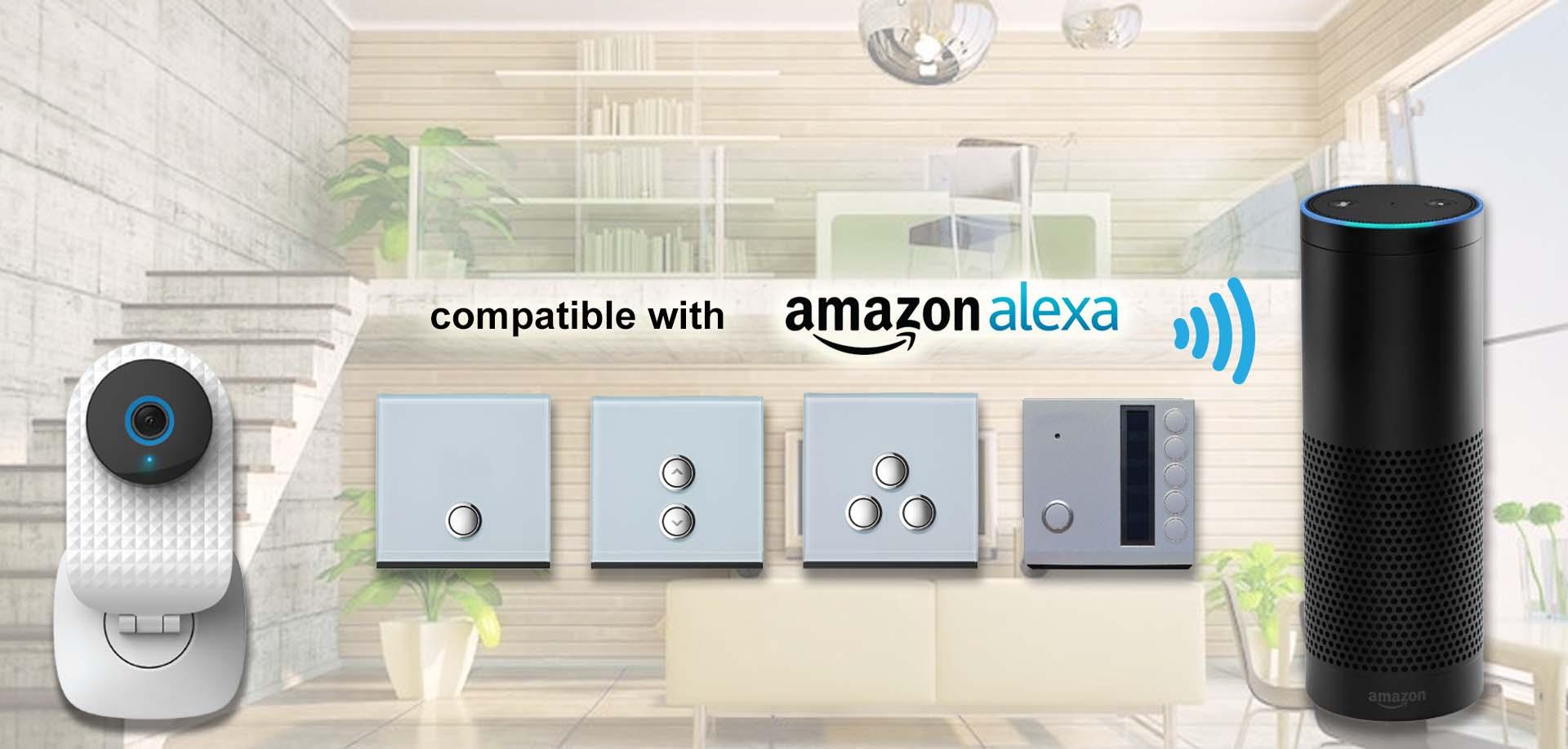 Amazon Alexa compatible - LT Smart Camera